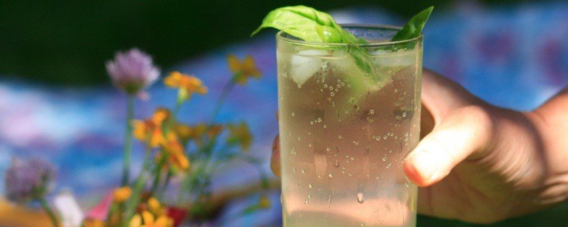 basil lemonade 1