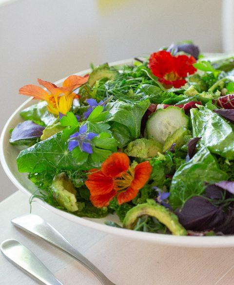 Fresh from the garden salad Recipe