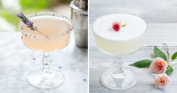 two lavender cocktails